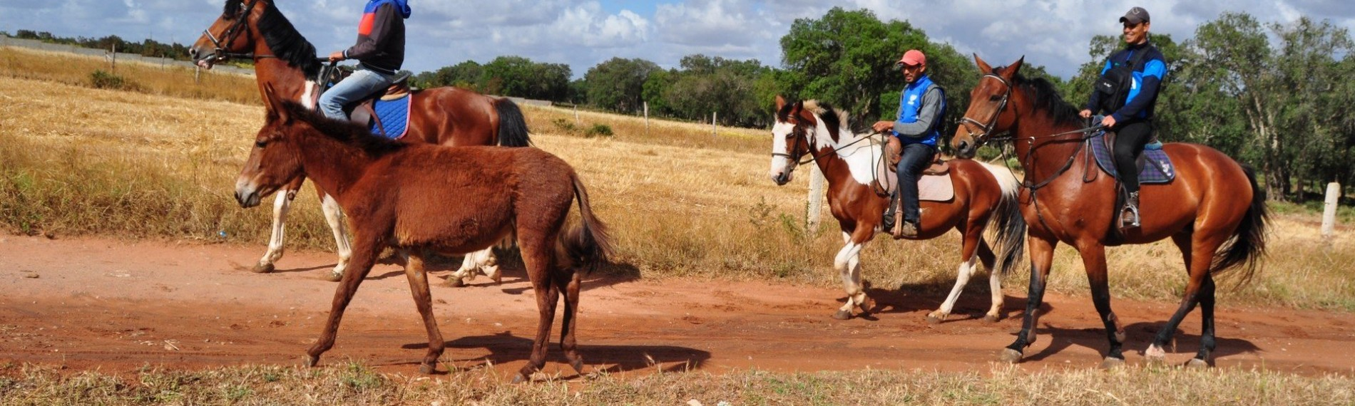 Equestrian Trips in Morocco