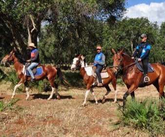 equestrian tours in Morocco