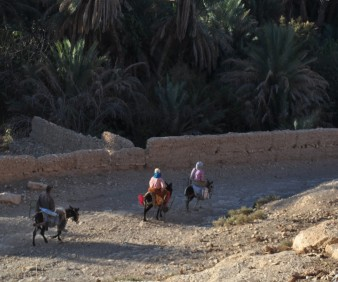 Berber villages one day excursion from Fez